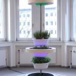 Die Metamorphose des Lagerfeuers Villa Zanders Vertical Garden Felix Ahn Paul Guddat Hassan Kaya Christoph Laszig