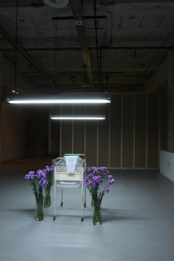 Matter of Life Growing new Bio Art Design at MU Gallery Eindhoven Common Flowers Flower Commons Shiho Fukuhara & Georg Tremmel