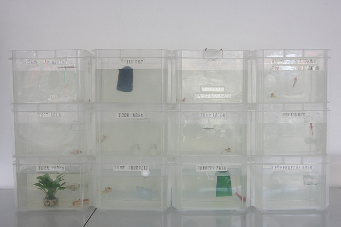 Fish Futures by Martí Guixé, as seen at Pet Market, Galerie erstererster, Berlin