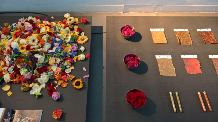 2,000,000,000 Precious Pieces by Rachelle Hornesch. Every year in Holland two billion cut flowers are thrown away. For Rachelle Hornesch a resource for pigmnets, dyes, materials etc...