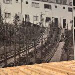 The gradens of Praunheim, as seen at New Human, New Housing - Architecture of the New Frankfurt 1925–1933, the Deutsches Architekturmuseum Frankfurt