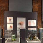 Ich bin ganz von Glas. Marianne Brandt and the Art of Glass Today, Sächsische Industriemuseum Chemnitz