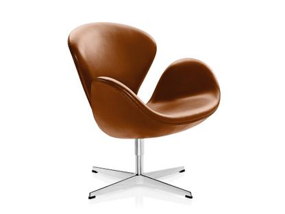Tremendous Swan Chair Evergreenethics Interior Chair Design Evergreenethicsorg