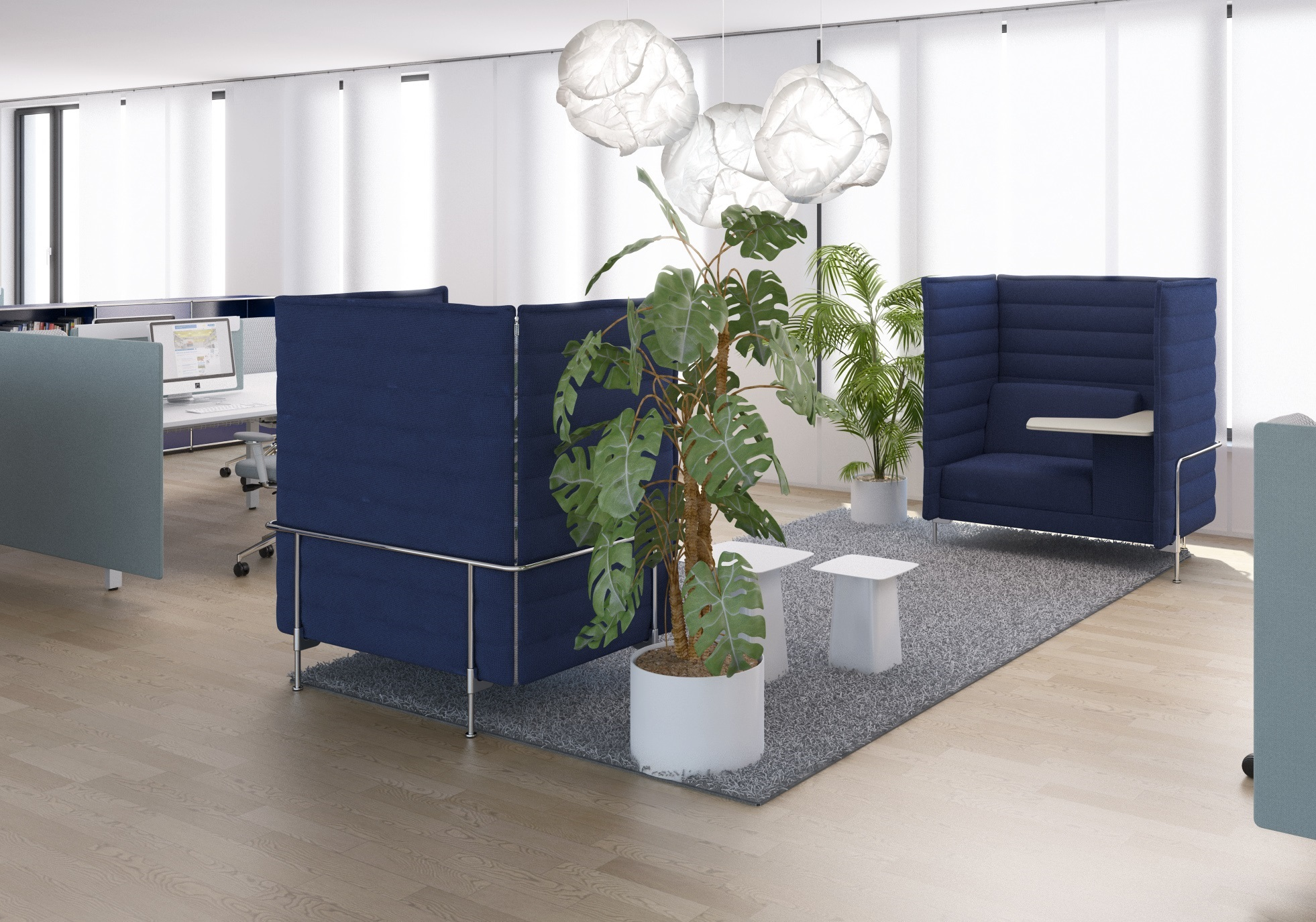 Sustainable Office plants